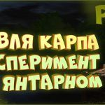 Карп на озере Янтарное. Эксперимент с точками • Русская рыбалка 4 • Сборка на карпа