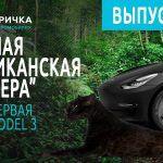 Раненая американская пантера. Tesla Model 3. Часть 1.