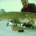 Рыбалка для сильных духом людей! Якутия Yakutia