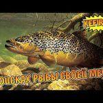 Русская Рыбалка 4➤ озеро Ладожское