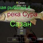 Русская рыбалка 4 — река Сура — Сазан