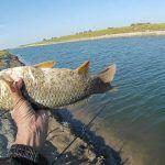В октябре на канале перед завершением сезона. Рыбалка на сазана.