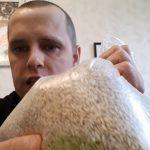 отвар овса рецепты при истощении организма. Как правильно принимать отвар в домашних условиях.