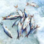 ЭТИ МОНСТРЫ РВУТ МОРМЫШКИ.Зимняя рыбалка на малой реке.