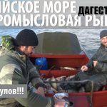 Промысловая рыбалка на Каспийском море. Кизляр, Дагестан.