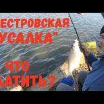 Днестровская «Русалка»,  за что платить? / Февральский подлещик.