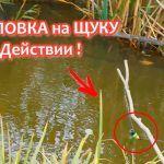 Самоловка(жерлица) на щуку ЗИМАЛЕТО изготовление и тест на рыбалке