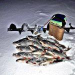 Зимняя рыбалка 2020!Чёртик,муровей и муха по прежнему работают!Ловля рыбы на озере.