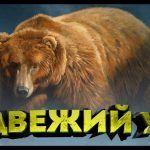 84-108 22 клипса  сазан прет! точку проверил!))Русская рыбалка 4 топ игра