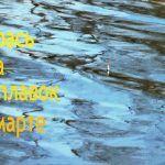 Карась на поплавок в марте. Ловля карася весной маховой удочкой. Замес прикормки с грунтом.
