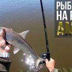 Ловля сазана и коня на быстрой реке Амур. Хабаровский край| Рыбалка на фидер| Приключения