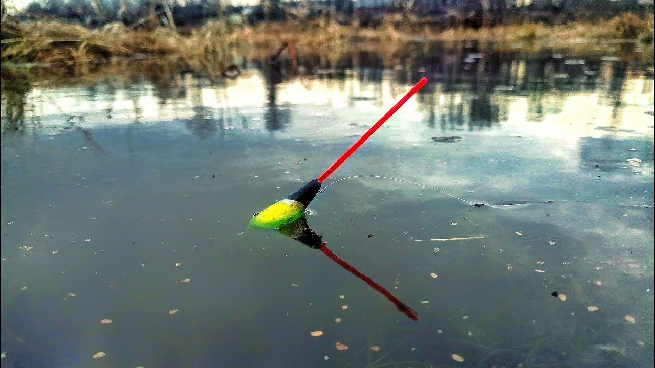 Рыбалка зубрилово пензенский район картинки пакет