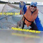РЫБАЛКА НА ВУОКСЕ 2017 / FISHING VUOKSA 2017