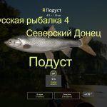 Русская рыбалка 4 — река Северский Донец — Подуст