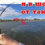 Хотел Уезжать и Тут Попёрло! (Рыбалка 2020) | #Vovabeer