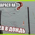 ЛОВЛЯ КАРАСЯ / ПОД БЕРЕГОМ / ДОЖДЬ / УЛОВ НА РЕКЕ #рыбалка #карась #клев #дождь #удочка #поплавок