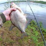 МАЙСКИЙ ЛЕЩ НА ПЕНОПЛАСТ! ДОНКИ РУЛЯТ! Рыбалка на средней Волге.