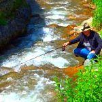 РЫБАЛКА В ГОРНОЙ РЕЧКЕ НА ДОНКУ. Оторвался по полной! River solo fishing.