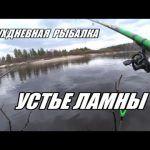 РЫБАЛКА В УСТЬЕ ЛАМНЫ (ДЕНЬ ПЕРВЫЙ) 18+