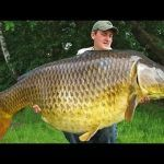 Рыбалка на КАРПА-ВЕЛИКАНА ловля карпа 2020