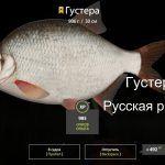 Русская рыбалка 4(рр4) — озеро Старый острог. Густера.