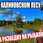 В РАЗВЕДКУ / НА РЫБАЛКУ / ОЗЕРО В КАЛИНОВСКОМ ЛЕСУ #рыбалка #паплавок #кормушка #лес #озеро