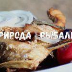 ЖАРЕННАЯ РЫБА | КОВУРИЛГАН БАЛИК | FRIED FISH | Рыбалка на реке Сырдарья! #ЦойЖарит рыбу ASMR