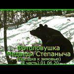Фотоловушки Медведи Степаныча Поездка к зимовью (2 часть) 01 06 20